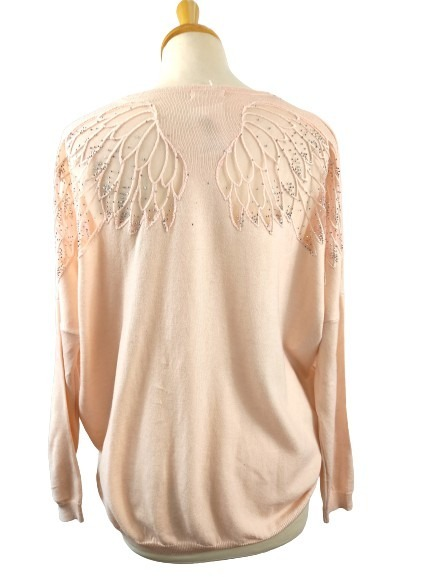 Pull brodé ailes MOËWY